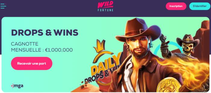 Casino Wild Fortune notre critique